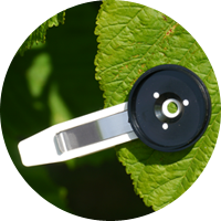 Arborcheck | Clear, intuitive results derived from non-destructive measurements of leaf chlorophyll fluorescence and chlorophyll content